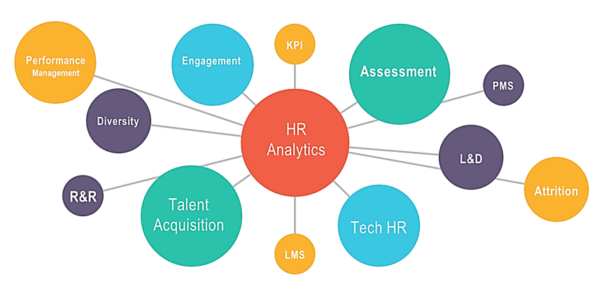 HR Analytics Usage in Various HR Processes